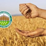 Blog de Agraria San Antón | Semillas certificadas
