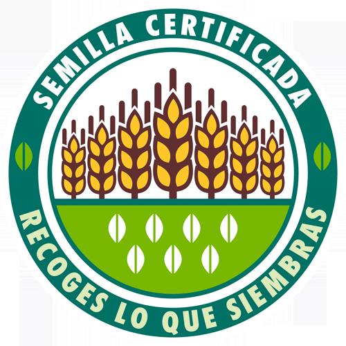 Semillas certificadas
