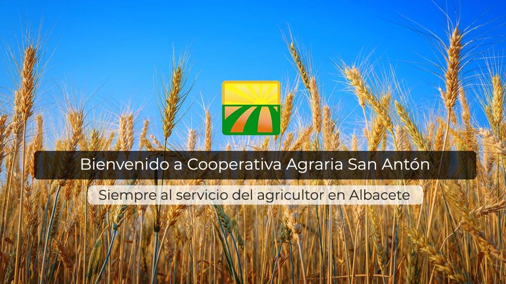 Cooperativa Agraria San Antón | Secadero de maíz y cereales