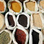 Los cereales y granos más cultivados | Cooperativa Agraria San Anton