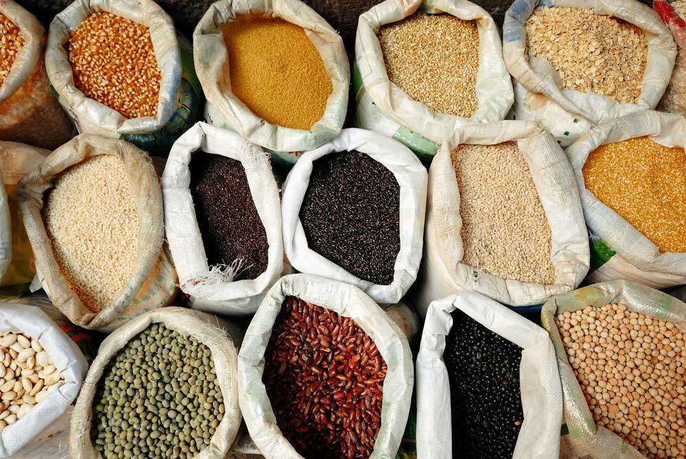 Cereales Y Granos Cooperativa Agraria San Antón
