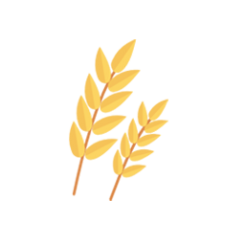 Cereales | Agraria San Antón